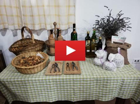 Anteprima_VIDEO.JPG