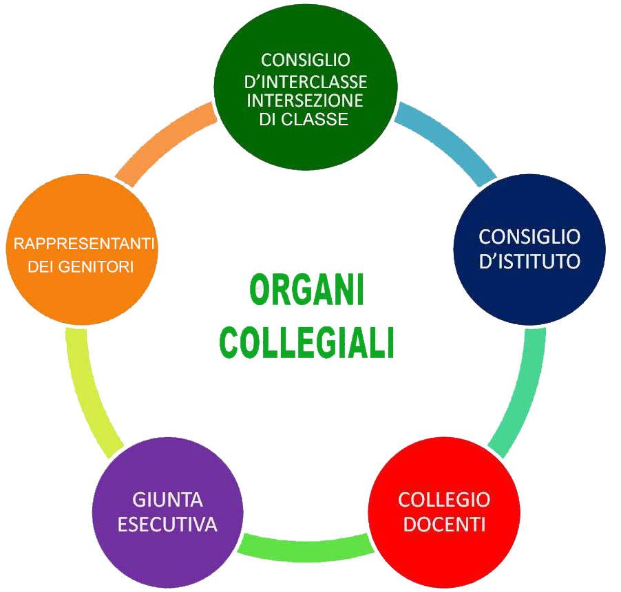 organi_collegiali.jpg